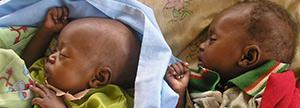 Proporcionas 1 tratamiento nutricional para un niño durante 20 días