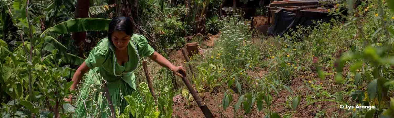 Guatemala: rompiendo barreras en el Corredor Seco