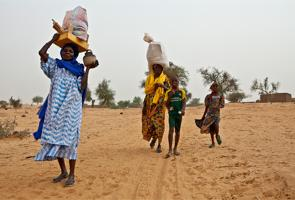 Niger: victims of war urgently need protection and humanitarian assistance