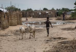 """Lago Chad: """"La comunidad internacional debe coordinar más y mejor la ayuda a 11 millones de personas"""""""