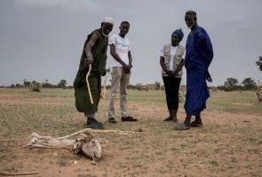 """""""La agroecología debe estar en el centro del debate sobre el cambio climático"""""""
