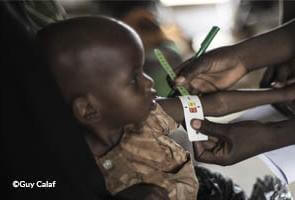 Nigeria: evidence indicates elevated risk of famine in the Northeast