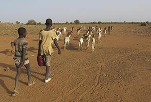 Mauritania: Más de 600 000 personas se quedarán sin alimentos en un mes