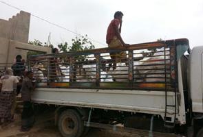 Yemen: dañado uno de nuestros almacenes en el norte de Hodeida