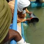 Cestas flotantes para combatir el hambre en Malí