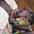 Semana por la lactancia materna: madres blogueras se unen a la lucha contra la desnutrición infantil