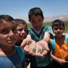Junto a la Fundación We are Water – Roca vamos a mejorar las condiciones de agua y saneamiento en escuelas en El Libano.