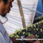 Zamboanga: Rebuilding Peace and Hope