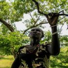 El diario de Agao, una madre contra la desnutrición