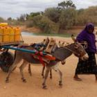 """Somalia: """"sin agua y sin cosechas"""""""