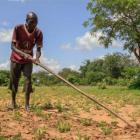 Sudán del Sur: distribuimos semillas y herramientas para trabajar el campo