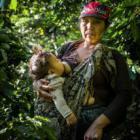 GUATEMALA: La ruta del temporero