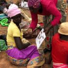 ZIMBABUE: LA MITAD DE LA POBLACIÓN PADECE DEL HAMBRE