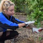 Mujeres que apuestan por volver al campo para ser emprendedoras sociales y sostenibles