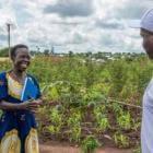 Lucy: la perseverancia de una refugiada en una pandemia