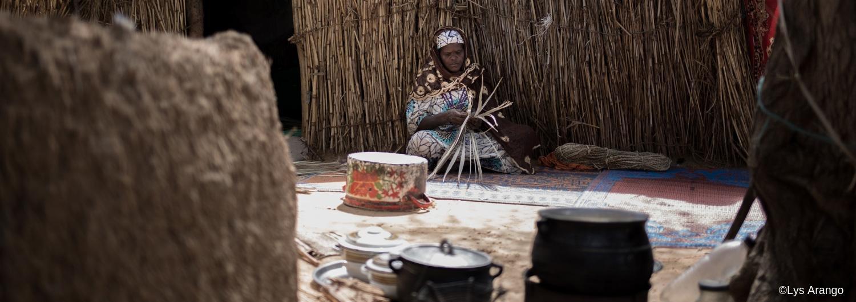 medios de vida en Níger
