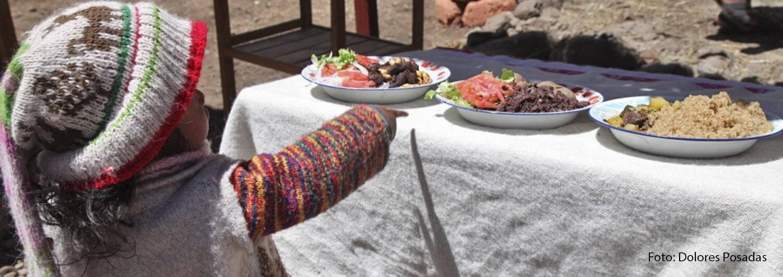 Alternativas alimentarias para las familias en el altiplano de Perú