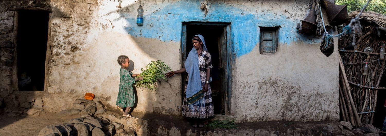 Etiopía, desnutrición, hambre