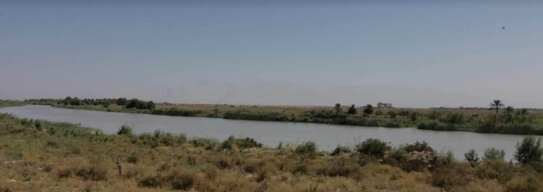 Iraq: apoyamos a los agricultores locales ante el cambio climático